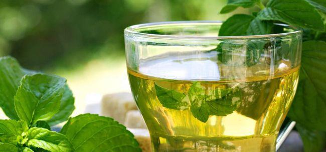 10 Efeitos colaterais inesperados de chá de hortelã