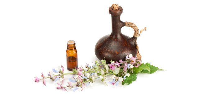 19 Usos e benefícios do óleo essencial de sálvia surpreendentes