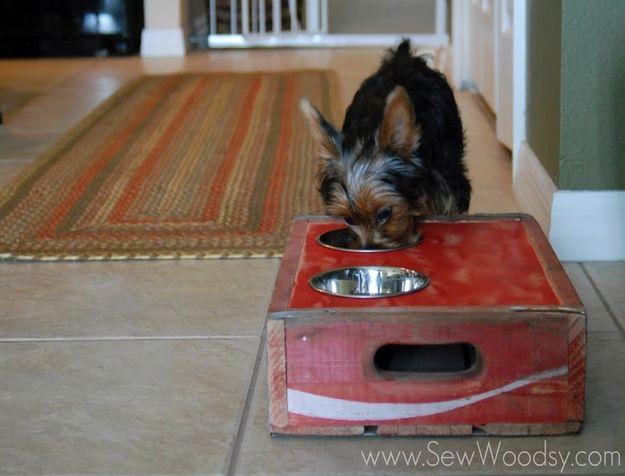 20 Estações de alimento útil diy do animal de estimação