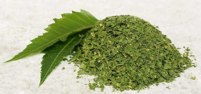 10 Usos surpreendentes de pó de neem