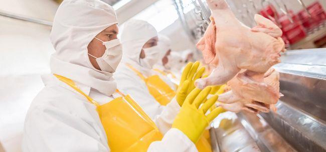 9 Maneiras comer alimentos processados fez o mundo doente e gordura