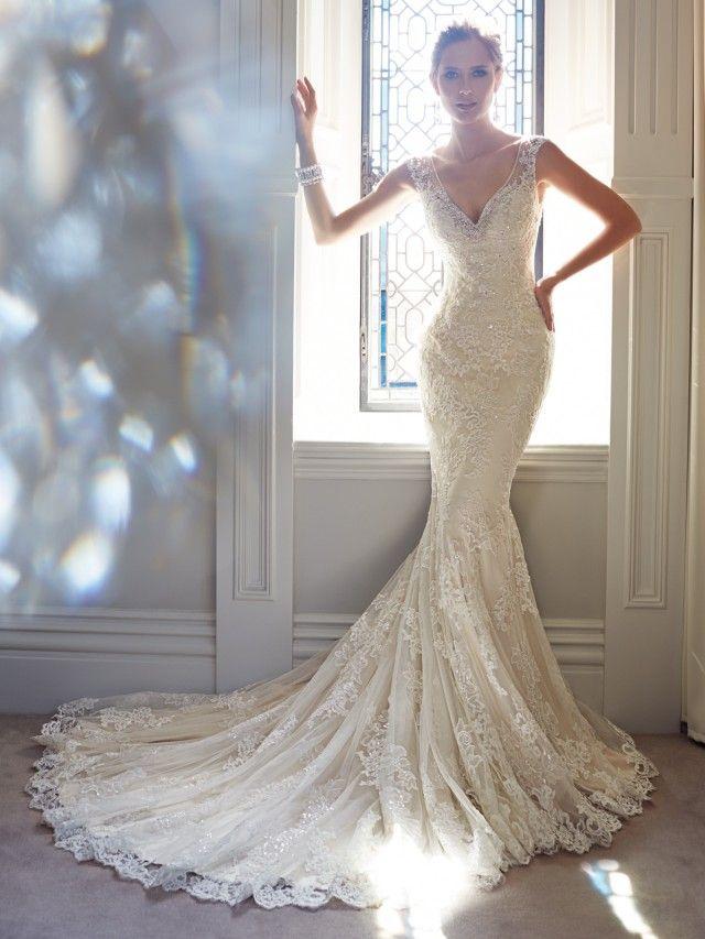 Uma coleção de 18 vestidos de noiva deslumbrante por tolli sophia