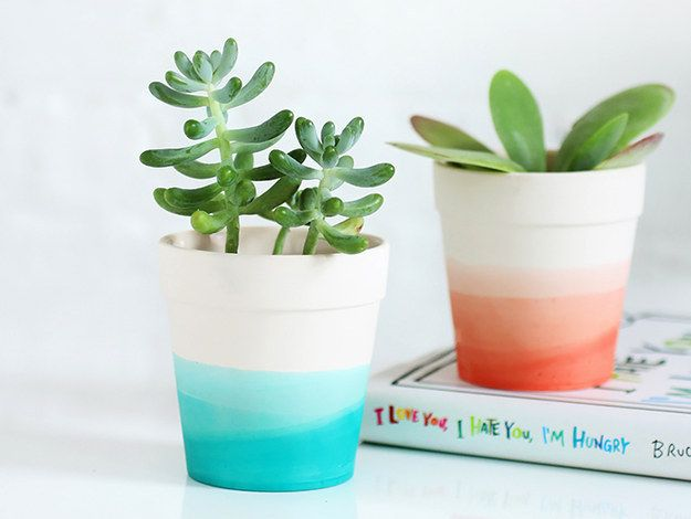 Plantas bonitos e Planters Neutral