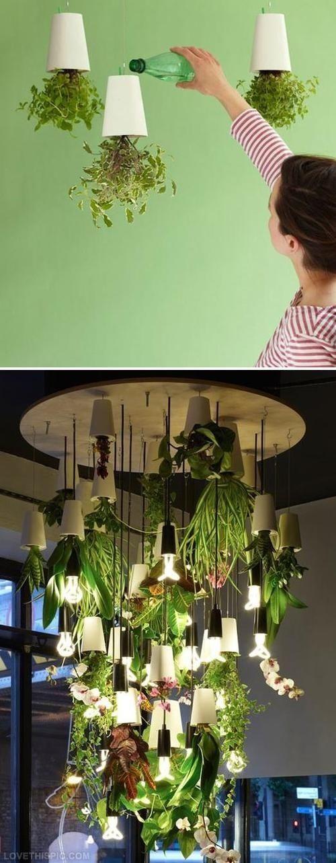 Jardim Indoor