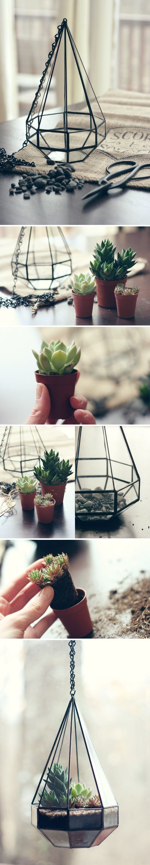 Terrariums DIY adoráveis