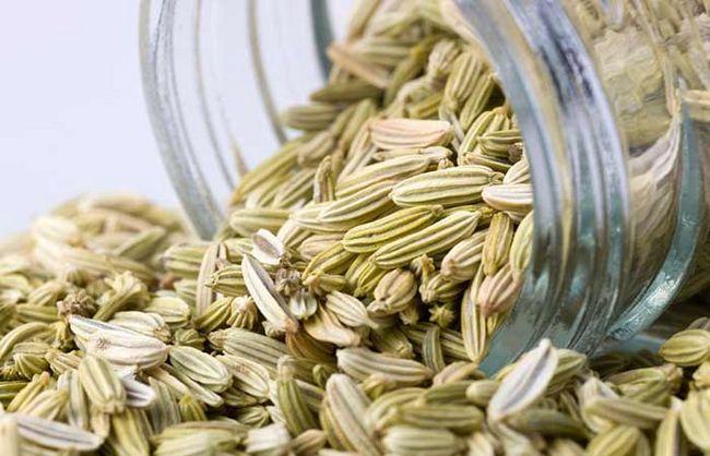 3.-Funcho-Seeds
