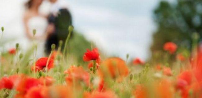 Conselho da união para as mulheres: você está pronto para o casamento?