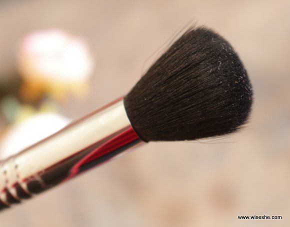 Sigma contorno de pequeno porte fibras da escova F05 Maquiagem