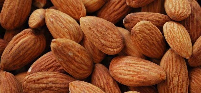 Top 25 vitamina e alimentos ricos