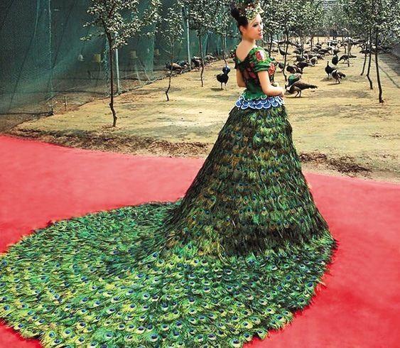 Penas do pavão vestido de casamento