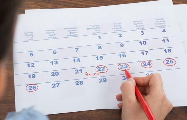 4.-A-Menstrual-Cycle